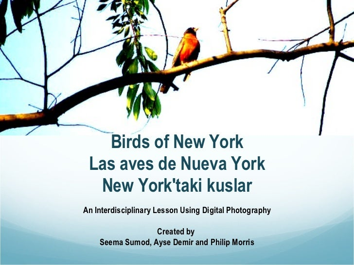 Birds of New York Las aves de Nueva York New York'taki kuslar An Interdisciplinary Lesson Using Digital Photography Create...