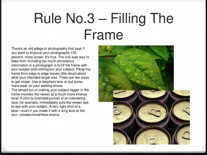 Rule No.4 – Framing The                 SubjectFraming is a technique used to enhance theoverall result of a photo and to ...