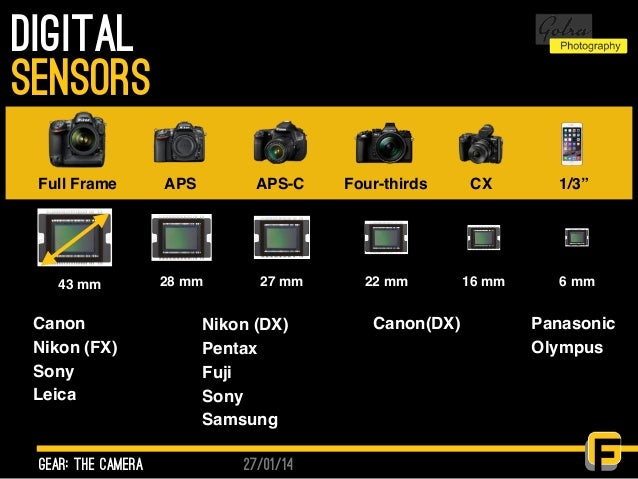 "27/01/14 Digital gear: the camera sensors Full Frame 43 mm APS 28 mm APS-C 27 mm Four-thirds 22 mm CX 16 mm 1/3"" 6 mm Cano..."