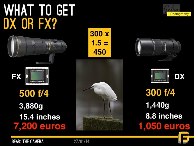 27/01/14 What to get gear: the camera dx or fx? 500 f/4 3,880g 15.4 inches 300 f/4 1,440g 8.8 inches 7,200 euros 1,050 eur...
