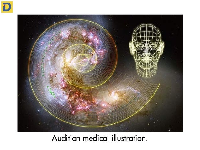 Audition medical illustration.