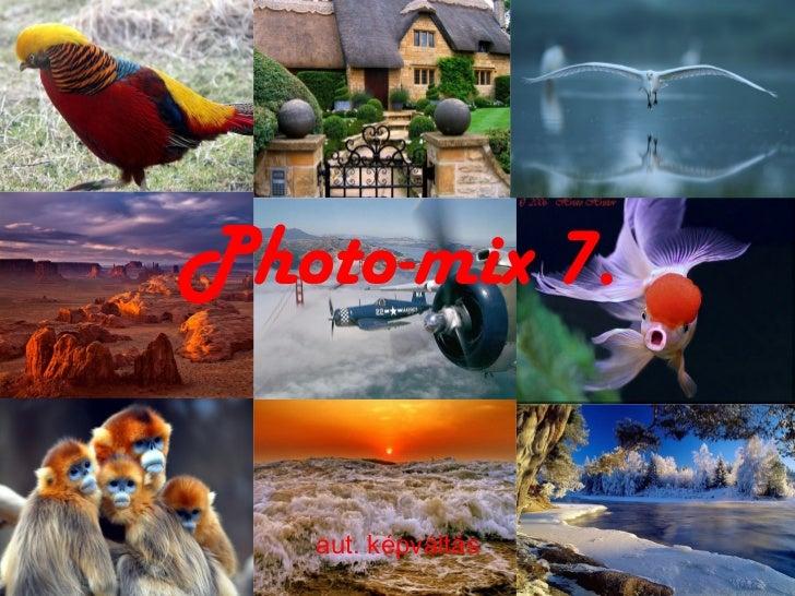 Photo-mix 7. aut. képváltás