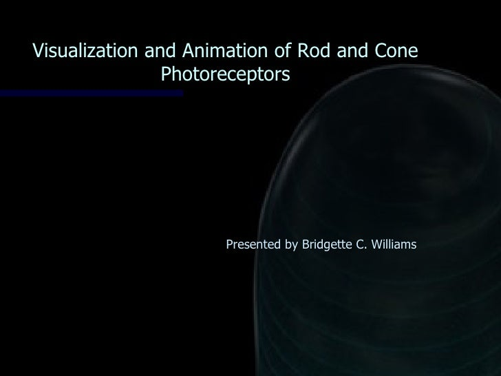 Visualization and Animation of Rod and Cone Photoreceptors Presented by Bridgette C. Williams