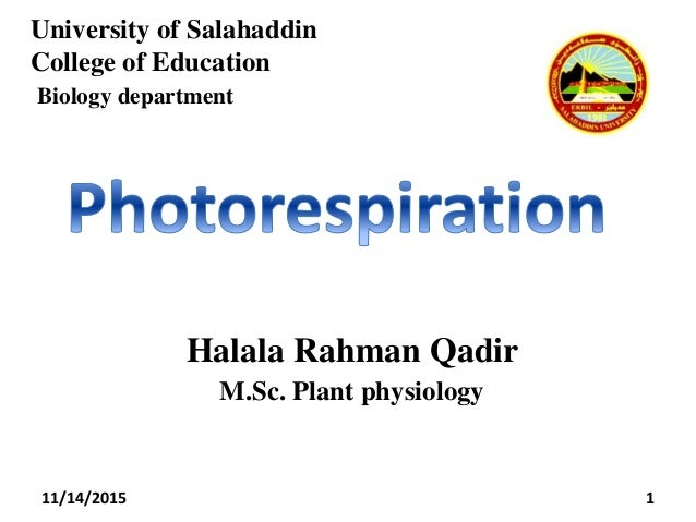 University of Salahaddin College of Education Biology department 1 Halala Rahman Qadir M.Sc. Plant physiology 11/14/2015
