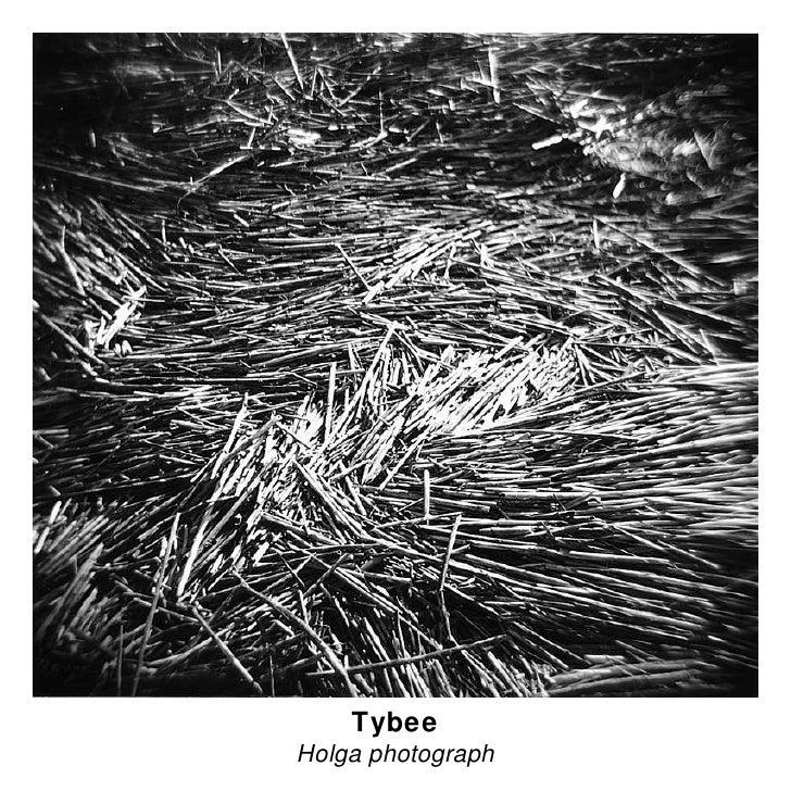Tybee Holga photograph