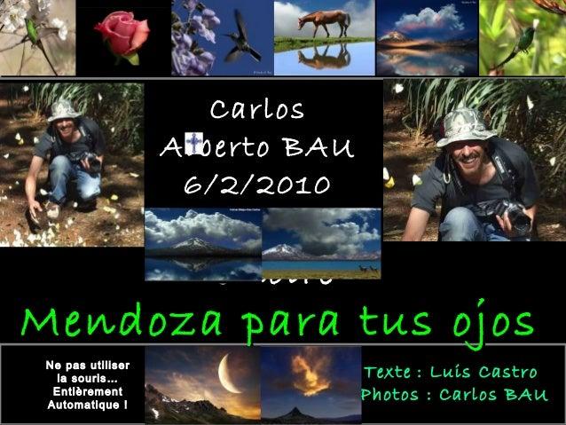CarlosCarlos Alberto BAUAlberto BAU 6/2/20106/2/2010 En saEn sa mémoiremémoire Ne pas utiliser la souris… Entièrement Auto...