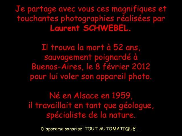 Je partage avec vous ces magnifiques et touchantes photographies réalisées par Laurent SCHWEBEL. Il trouva la mort à 52 an...