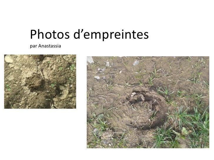 Photos d'empreintespar Anastassia