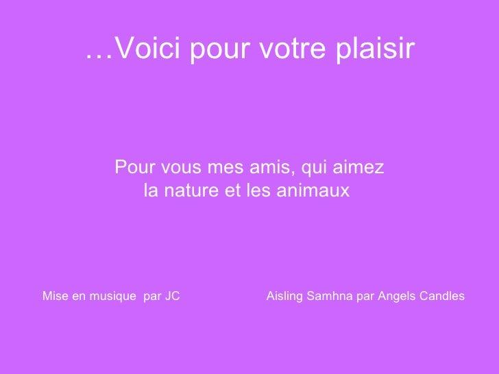 Voici pour votre plaisir… <ul><li>Pour vous mes amis, qui aimez </li></ul><ul><li>la nature et les animaux </li></ul>Mise ...