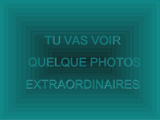 TU VAS VOIRTU VAS VOIRQUELQUE PHOTOSQUELQUE PHOTOSEXTRAORDINAIRESEXTRAORDINAIRES