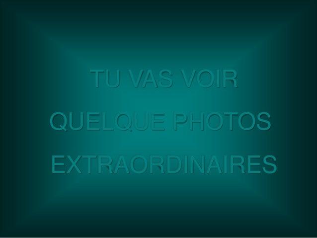 TU VAS VOIR QUELQUE PHOTOS EXTRAORDINAIRES