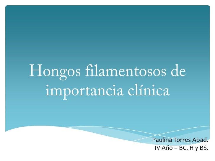 Hongos filamentosos de importancia clínica<br />Paulina Torres Abad.<br />IV Año – BC, H y BS.<br />