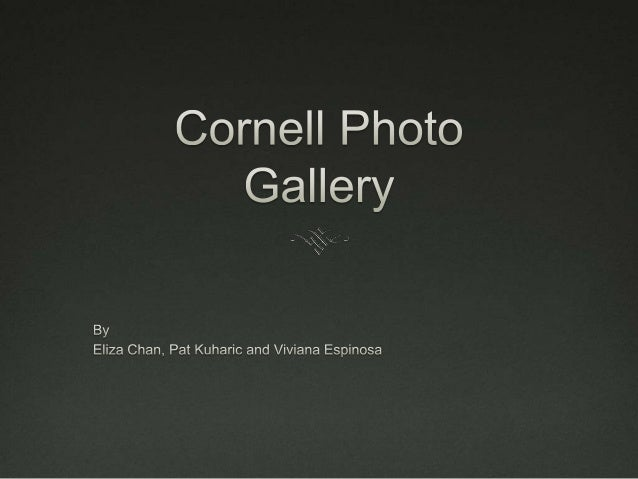 Goals Find a viable way for users Cornell's photography  services to use real photographs Steer designs from heavy use o...