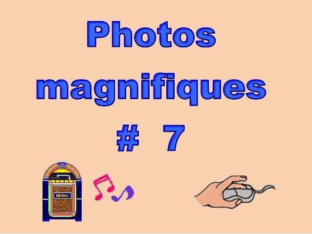 Photos magnifiques __711