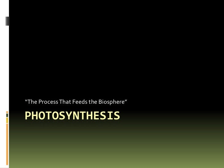 """Photosynthesis<br />""""The Process That Feeds the Biosphere""""<br />"""