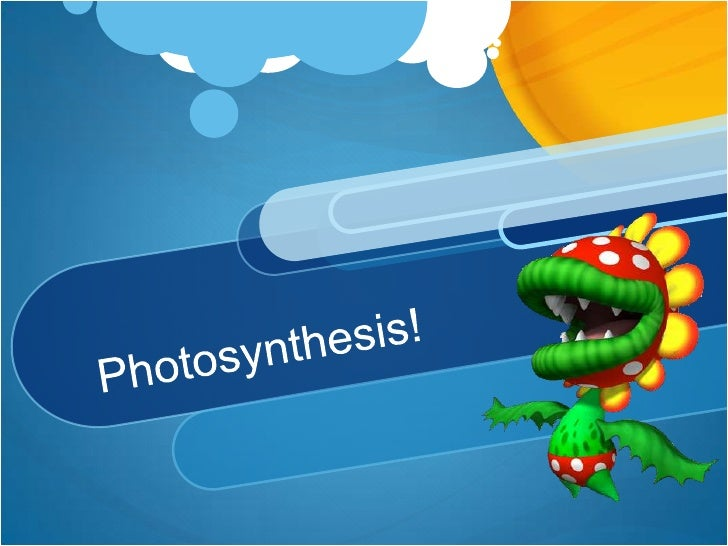 Photosynthesis!<br />