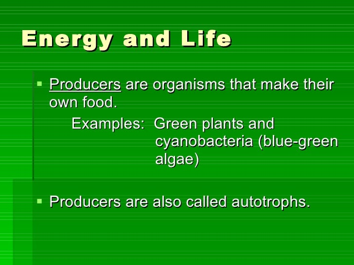 The Process By Which Green Plants Make Food Is Called