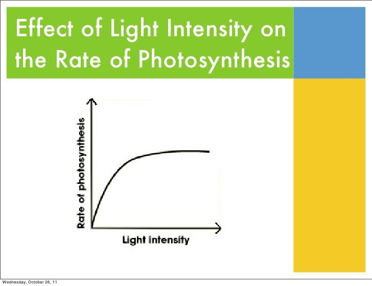 effect of light colour on the rate of photosynthesis Different colors of light photobioreactor productivity was estimated employing a microalgae growth model the model predicts photosynthetic rates at every loca- tion in the reactor based on the local light intensity the light intensity is calculated for each wavelength at every point in the reactor to account.