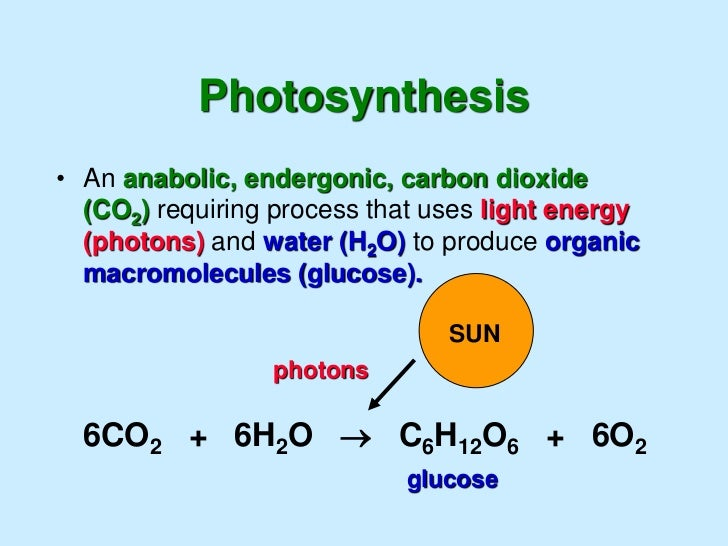 involved in photosythesis Which gas is removed from the atmosphere during photosynthesis a hydrogen   d energy is not involved in either photosynthesis or cellular respiration.