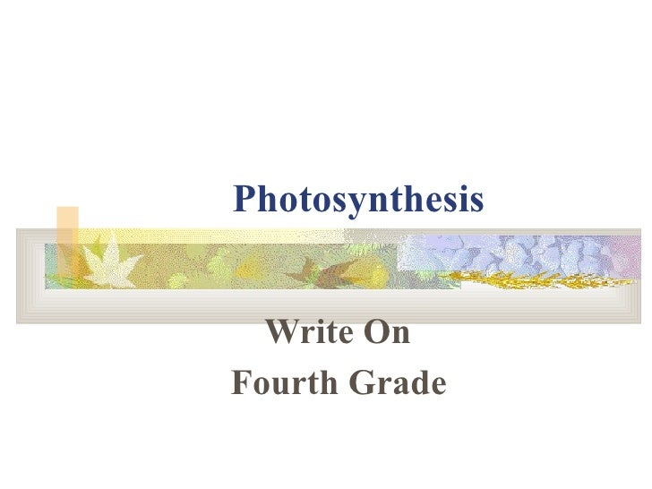 Photosynthesis  Write OnFourth Grade
