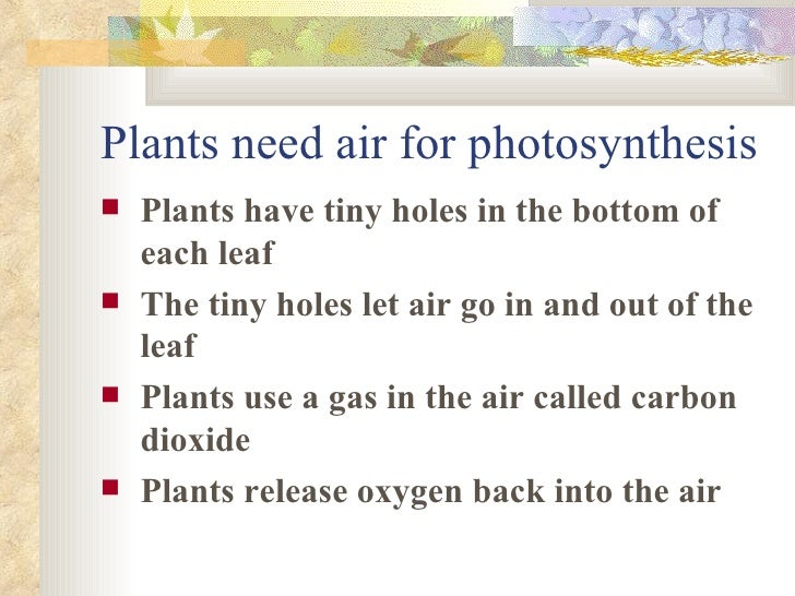 gas necessary for photosynthesis During photosynthesis, oxygen is produced along with glucose (not a gas) plants use photosynthesis as a way of producing glucose they take in light energy from the sun and water and carbon dioxide from the air.