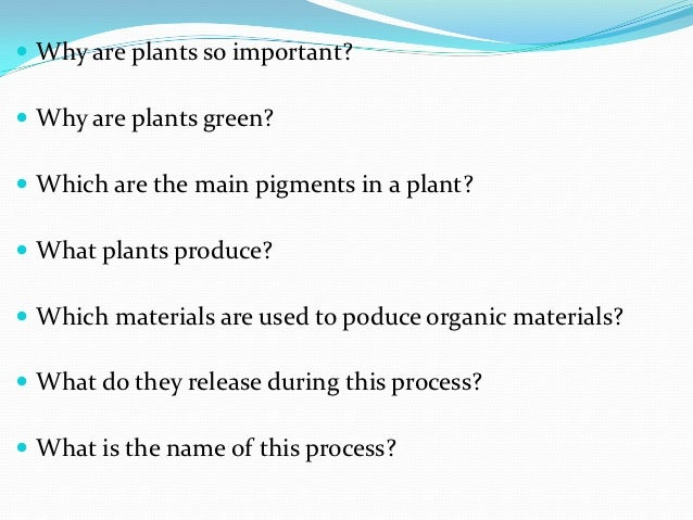  Why are plants so important? Why are plants green? Which are the main pigments in a plant? What plants produce? Whic...