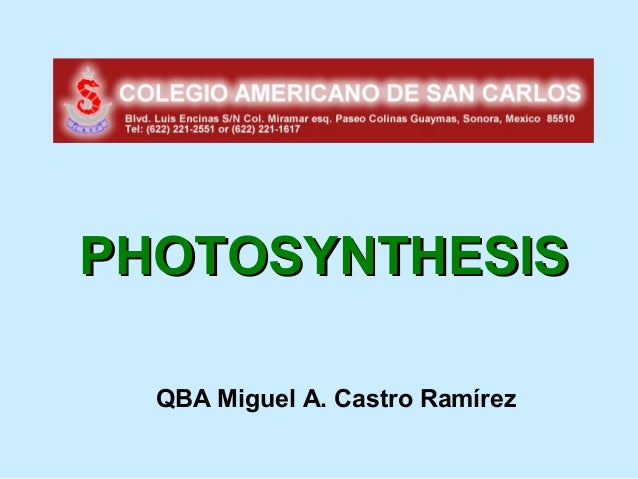 PHOTOSYNTHESIS  QBA Miguel A. Castro Ramírez