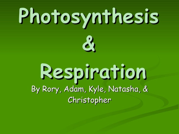 photsynthesis and respiration Identify the initial reactants, final products, and general purposes of photosynthesis and cellular respiration explain the important role of atp in cell metabolism.