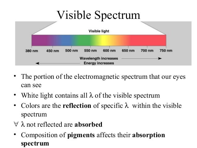 Visible Spectrum • The portion of the electromagnetic spectrum that our eyes can see • White light contains all λ of the v...