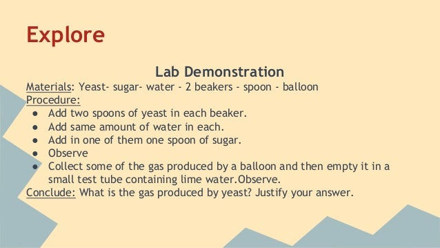 sugar respiration in yeast The yeast processes the added sugar first, saving the time it would take to break down starch into sugar with over three percent sugar, however, the fermentation rate no longer increases [1] above six percent, sugar actually decreases the rate this is because the sugar begins to dehydrate the yeast cells.