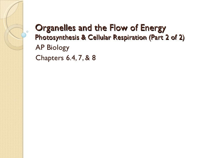 Organelles and the Flow of Energy Photosynthesis & Cellular Respiration (Part 2 of 2) AP Biology Chapters 6.4, 7, & 8