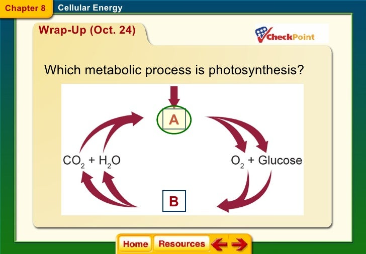 introduction to cellular respiration Learn more about cellular respiration, fermentation introduction to cellular respiration and redox practice introduction to cellular respiration 6 questions.