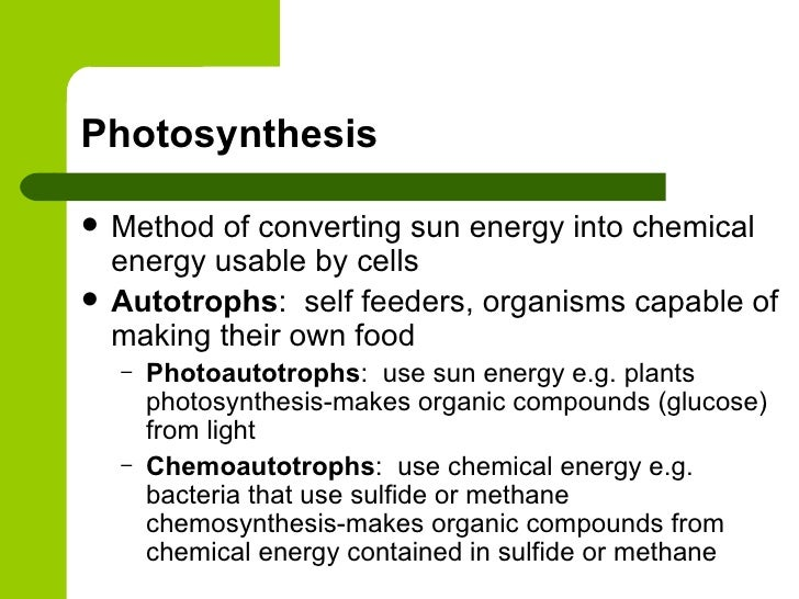 chemosynthesis of methane Photosynthesis and chemosynthesis are both processes by which the discovery of hydrothermal vents and cold-water methane seeps gave us a new vision of primary.