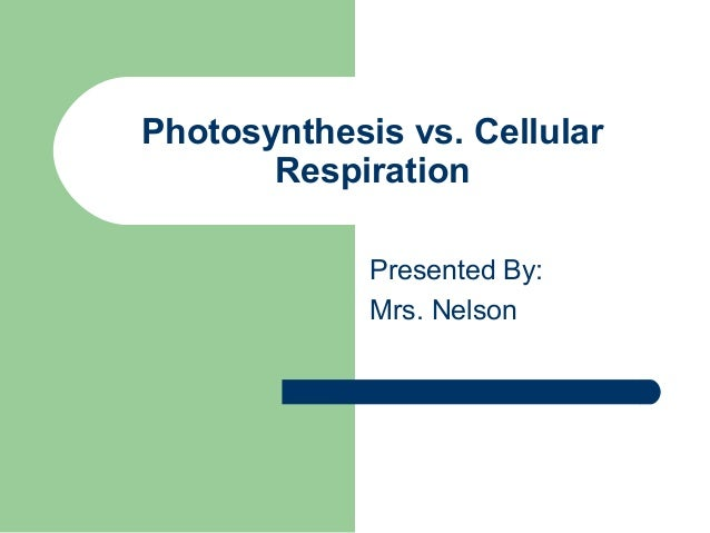 Photosynthesis vs. Cellular Respiration Presented By: Mrs. Nelson