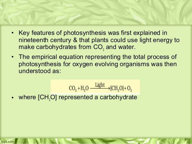 Photosynthesis Experiment: Making Science Fun