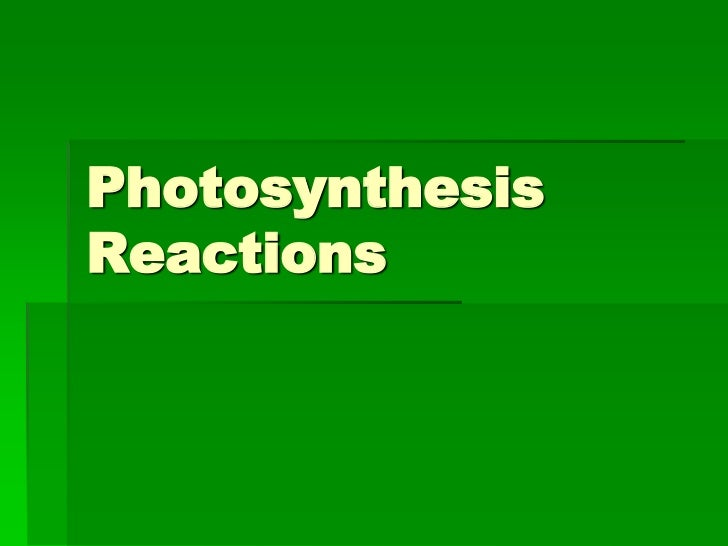 PhotosynthesisReactions