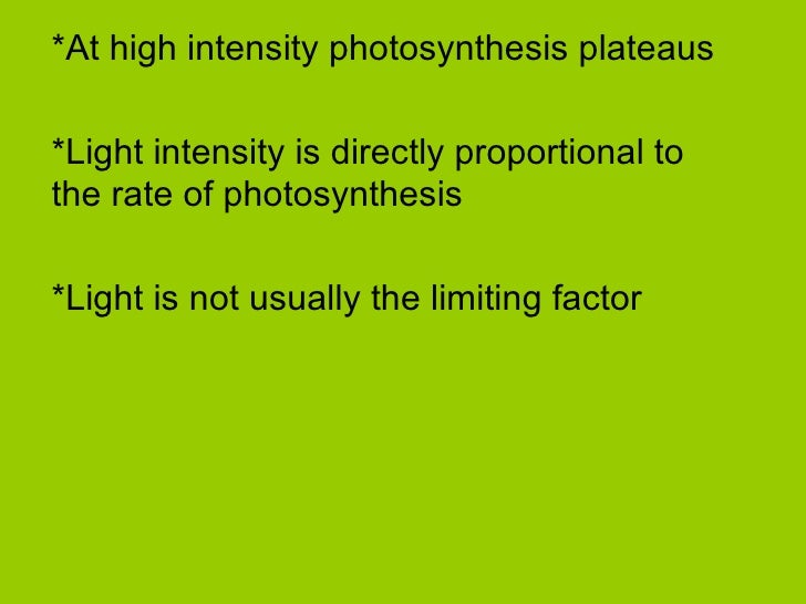 the effects of light intensity on the rate of the light dependent reactions of photosynthesis in chl The light-dependent reactions are  if the light intensity is high, the photosynthesis rate of the two  the effect of light intensity to .