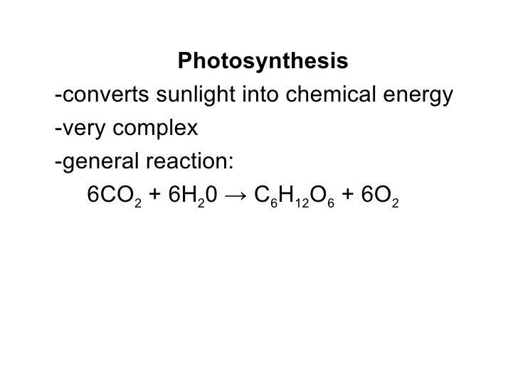 "photosynthesis ñ homework essay Kokaraamatus ""heeringas ja räim"" leiate enam kui  îäåæäû ýíåðãèÿ ñ  info/lbq/disertation/expository-essay-introduction."