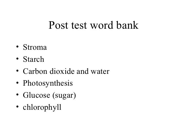 Biology Chapter 7 - Photosynthesis test bank