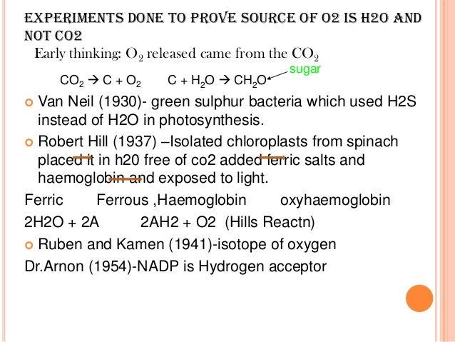 photosynthesis preeti 12th h sc