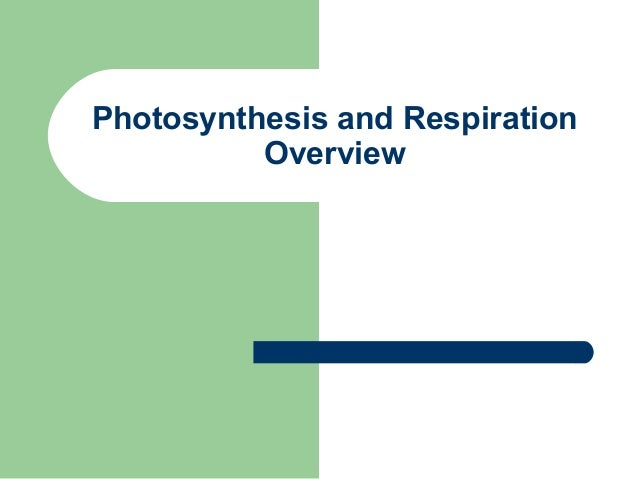 Photosynthesis and Respiration          Overview