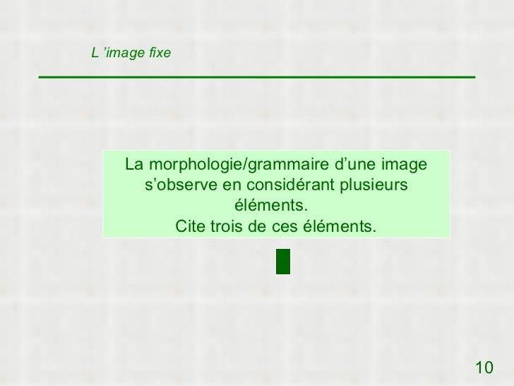 L 'image fixe     La morphologie/grammaire d'une image       s'observe en considérant plusieurs                    élément...