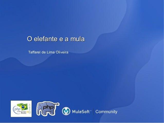 O elefante e a mula Taffarel de Lima Oliveira