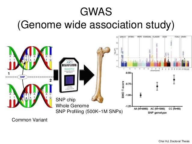 GWAS  PheWAS Phenotype-wide Association Study