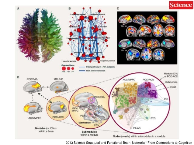 62 2013 Science Functional interactions as big data in the human brain 2012 Decoding subject-driven cognitive states with ...