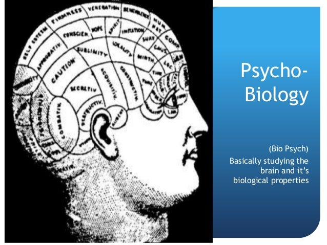 Psycho-  Biology  (Bio Psych)  Basically studying the  brain and it's  biological properties