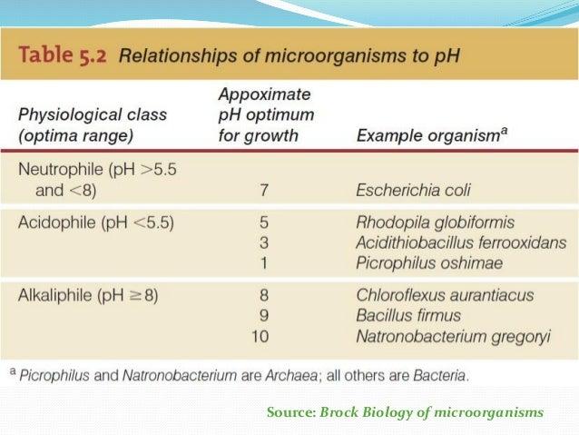 Types of Bacteria Living in Acidic pH