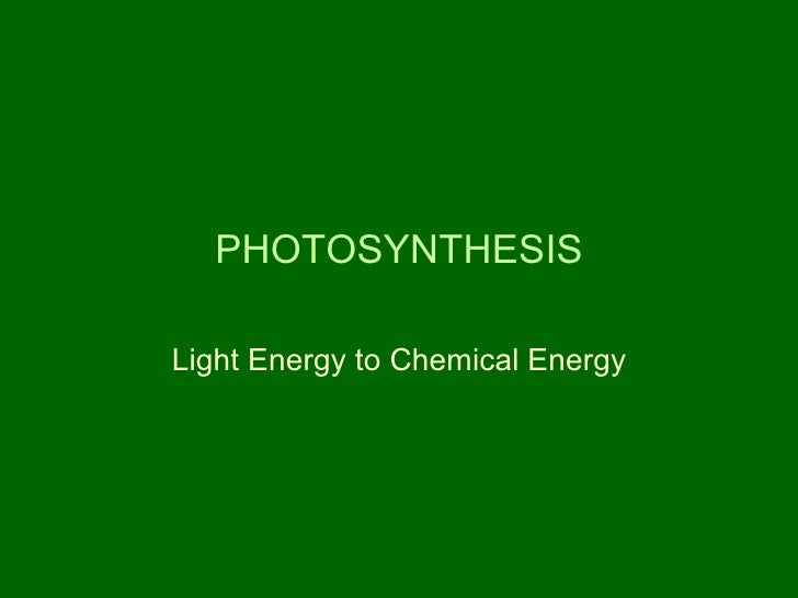 PHOTOSYNTHESIS Light Energy to Chemical Energy
