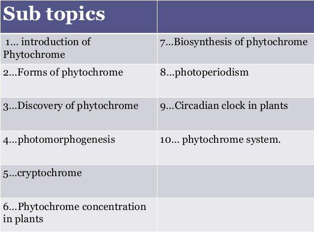 PHYTOCHROMES AND CRYPTOCHROMES EPUB