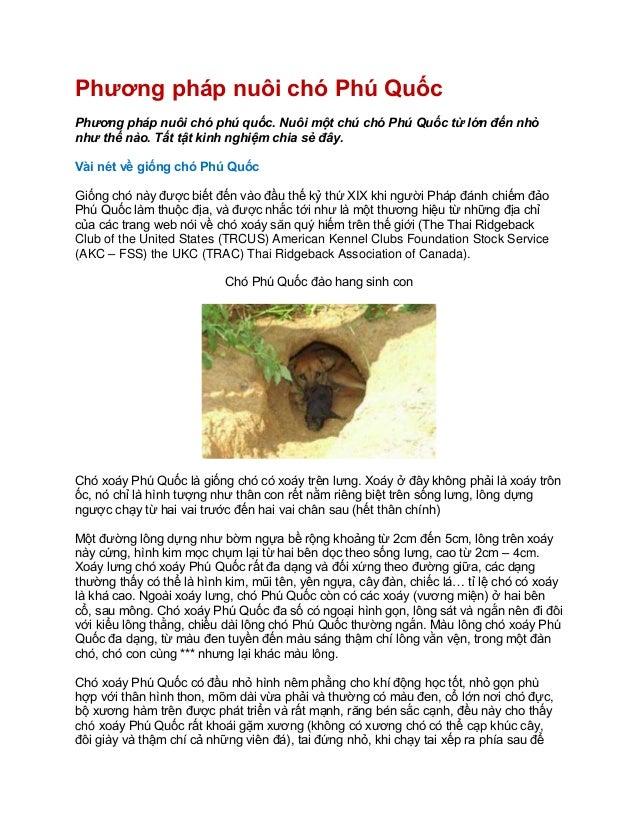 Phương pháp nuôi chó Phú Quốc Phương pháp nuôi chó phú quốc. Nuôi một chú chó Phú Quốc từ lớn đến nhỏ như thế nào. Tất tật...
